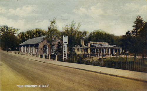 Cherry Tree Restaurant - postcard