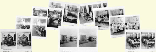 Set of stereoscopic cards of the Shredded Wheat factory
